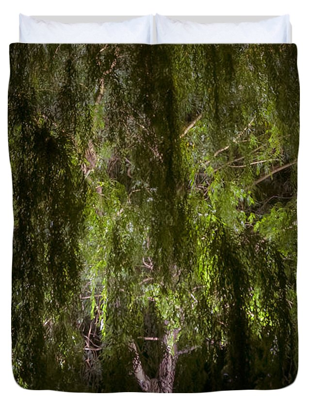 Enchanted Willow Duvet Cover featuring the photograph Enchanted Willow by Mylene O'Reilly