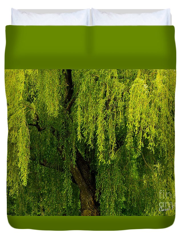 Weeping Willow Duvet Cover featuring the photograph Enchanting Weeping Willow Tree Wall Art by Carol F Austin