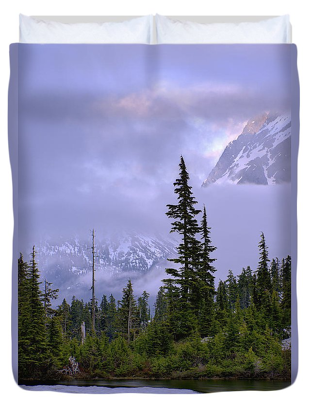 Nature Duvet Cover featuring the photograph Enduring Winter by Chad Dutson