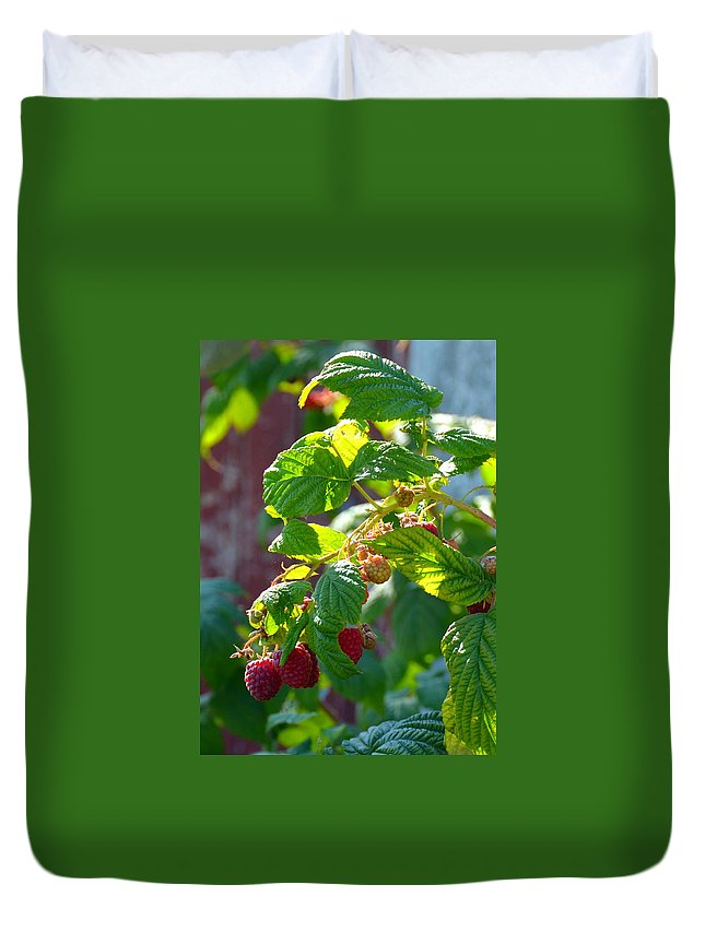 Raspberries Duvet Cover featuring the photograph English Raspberries by Carla Parris