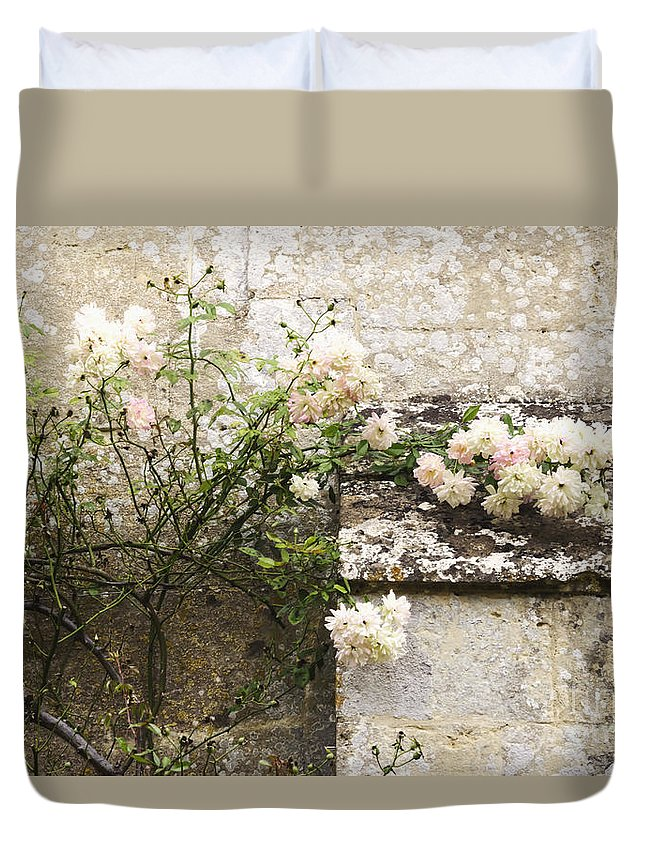 Floral; Flora; Flowers; Rose; Roses; Bush; Vine; Climb; Climbing; Pink; Green; Blue; Stone; Fa�ade; Building; Architecture; White; Aged; Decay; Branches; Tall; Roof; Wall; Side; Green; Leaves; Beautiful; Pretty; Lovely; Serene; Feminine; English Rose; Cultivated; Bunch; Group; Calm Duvet Cover featuring the photograph English Roses II by Margie Hurwich