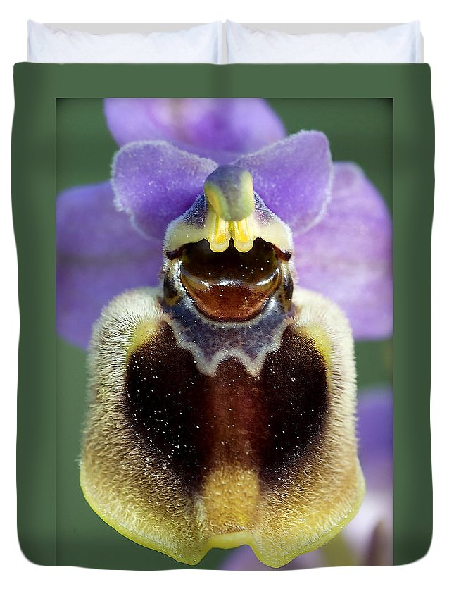 Macro Duvet Cover featuring the photograph Enigma Of Outer World by Pedro Cardona Llambias