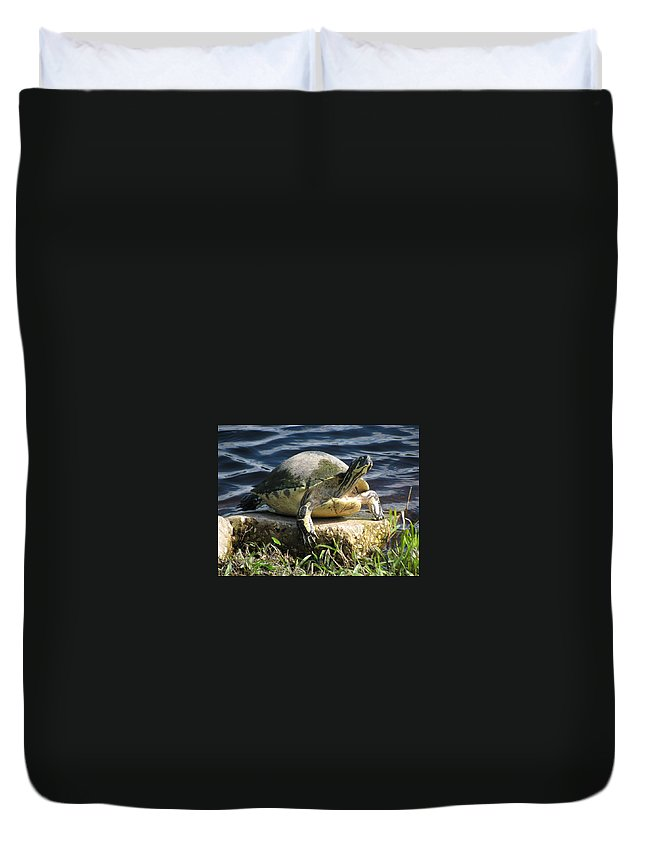 Turtle Duvet Cover featuring the photograph Enjoying The Sun by Zina Stromberg