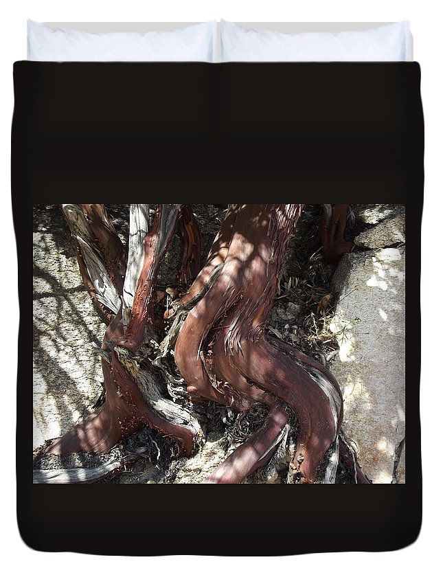 Tree Duvet Cover featuring the photograph Escaping The Crocodile by Stan Scott