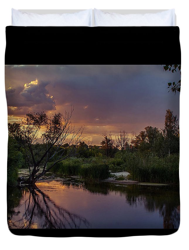 Ukraine Duvet Cover featuring the photograph Evening Colors by Dmytro Korol