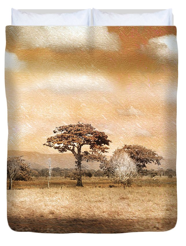 Landscapes Duvet Cover featuring the photograph Evening Showers by Holly Kempe