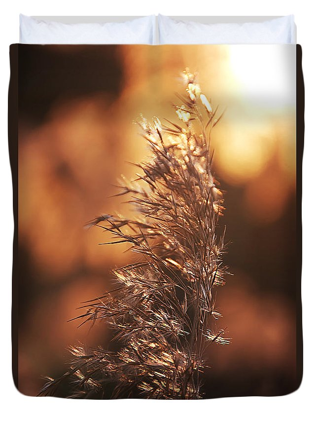 Abend Duvet Cover featuring the pyrography Evening by Steffen Gierok