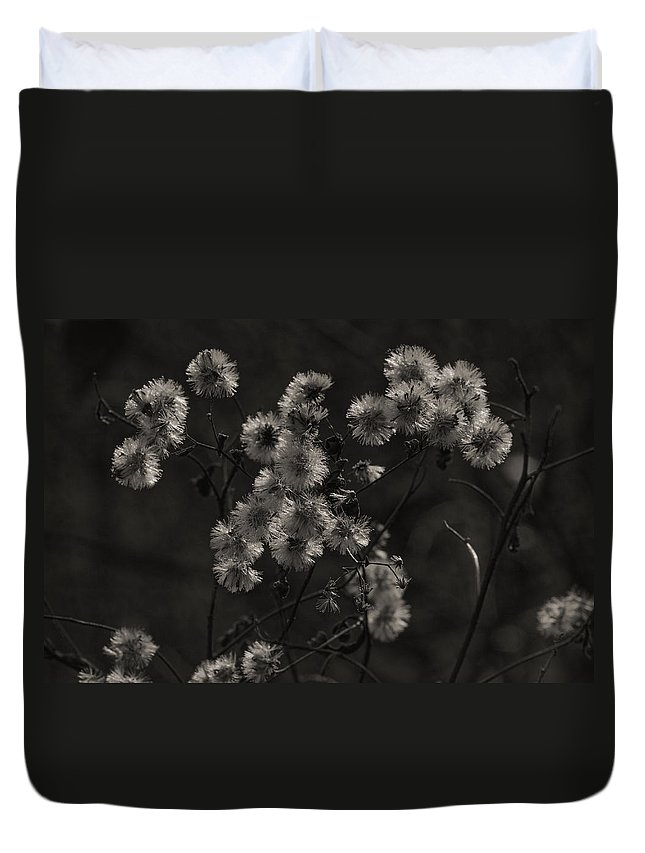 Wildflowers Duvet Cover featuring the photograph Everlasting by Susan Capuano