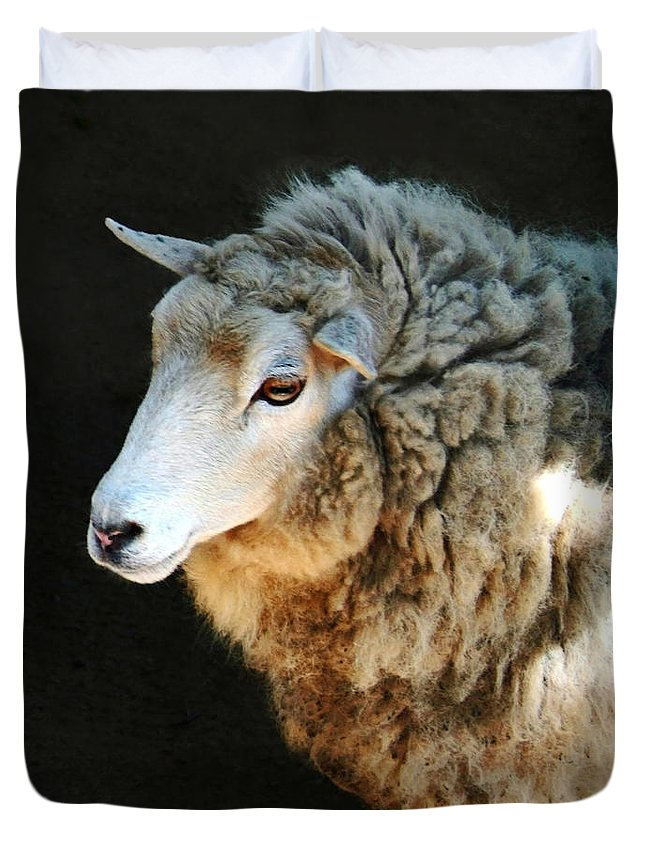 Ewe Are So Beautiful Duvet Cover featuring the photograph Ewe Are So Beautiful by Ellen Henneke