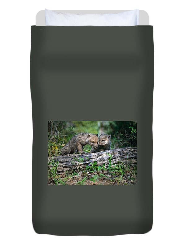 Wolf Duvet Cover featuring the photograph Exchange Of Confidential Information by Les Palenik
