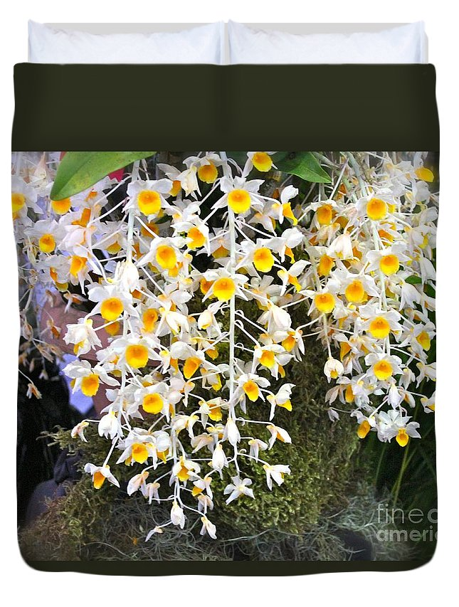 Rhynchostylis Gigantea Duvet Cover featuring the photograph Exotic Aerides by The Art of Alice Terrill