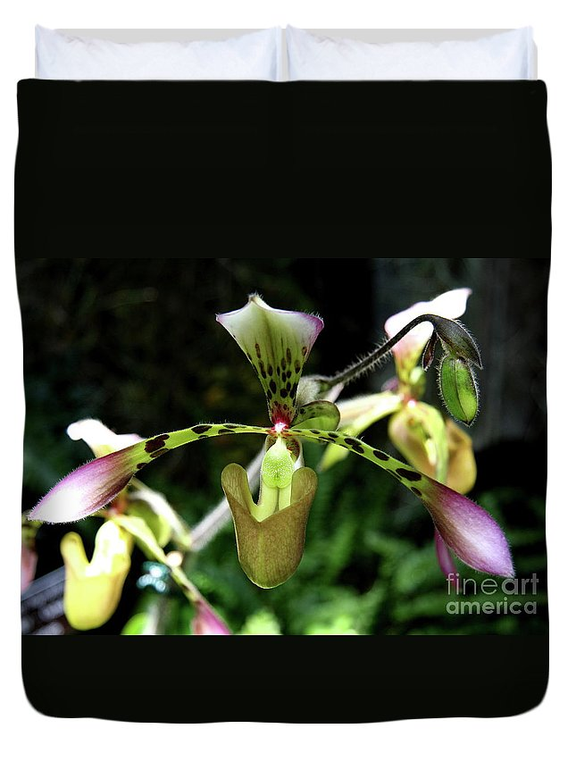 Ladyslipper Duvet Cover featuring the photograph Exotic Ladyslipper by Christiane Schulze Art And Photography