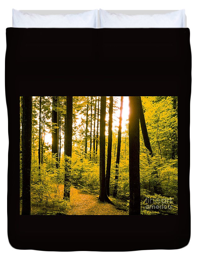 Enchanted Forest Duvet Cover featuring the photograph F0010063 by David Fabian