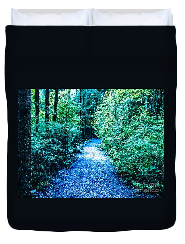 Enchanted Forest Duvet Cover featuring the photograph F0010066 by David Fabian