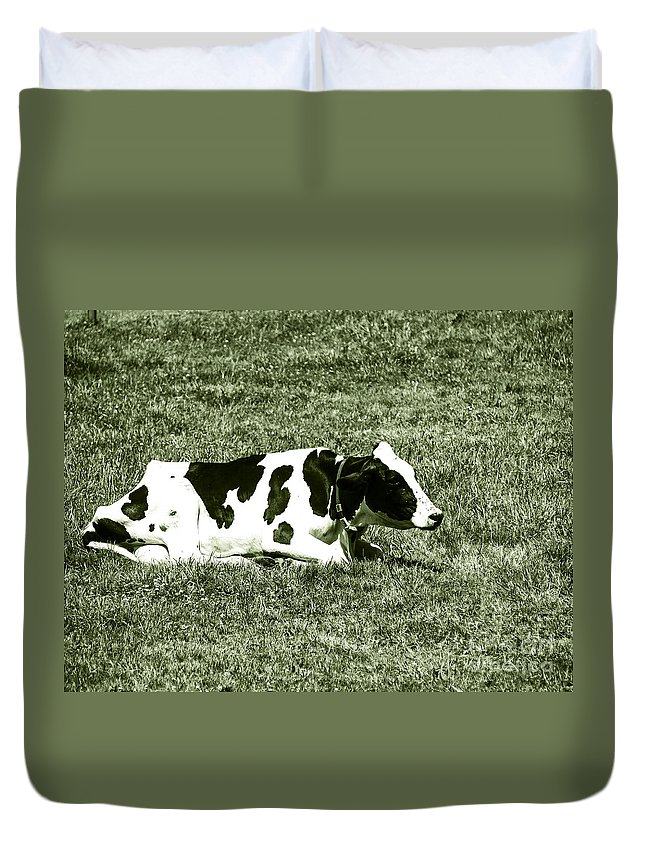 Dairy Cattle Duvet Cover featuring the photograph F0040454 by David Fabian