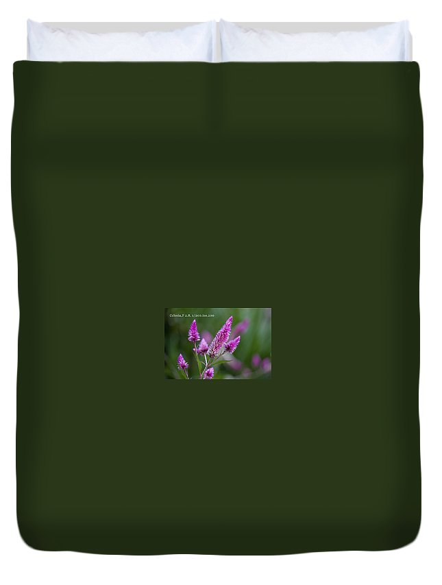 Duvet Cover featuring the photograph F2 Point 8 1 200th Sec Iso200 by Rich Franco