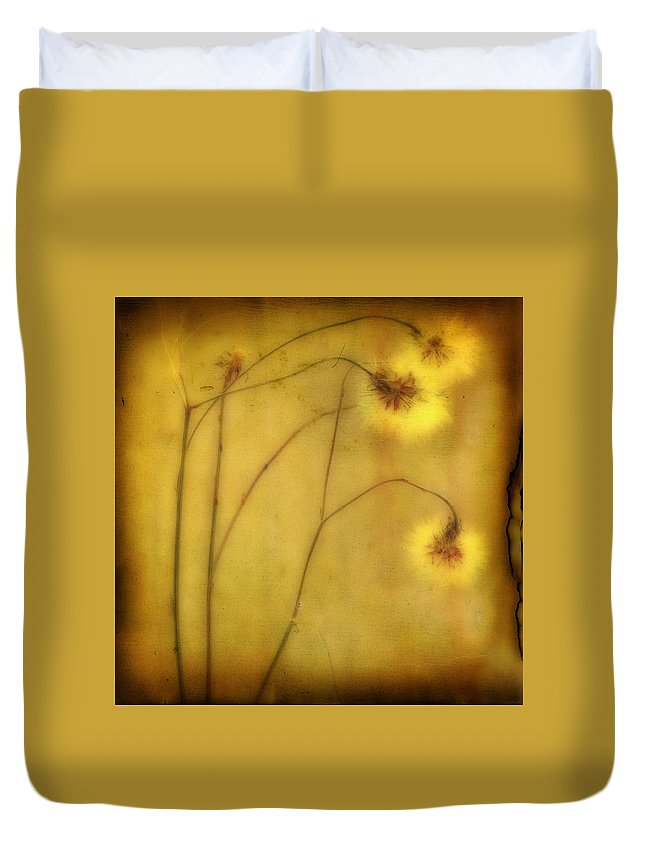 Vintage Colors Duvet Cover featuring the photograph Fade by Gothicrow Images