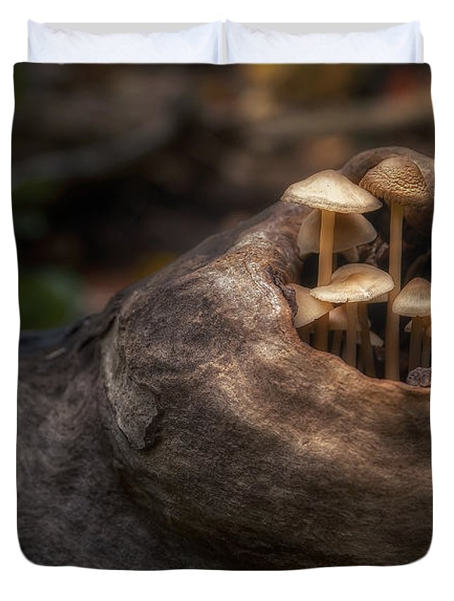 Knot Duvet Covers