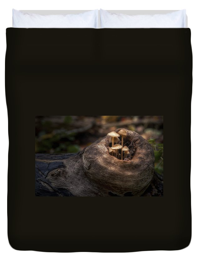 Mushroom Duvet Cover featuring the photograph Fairie Garden by Scott Norris