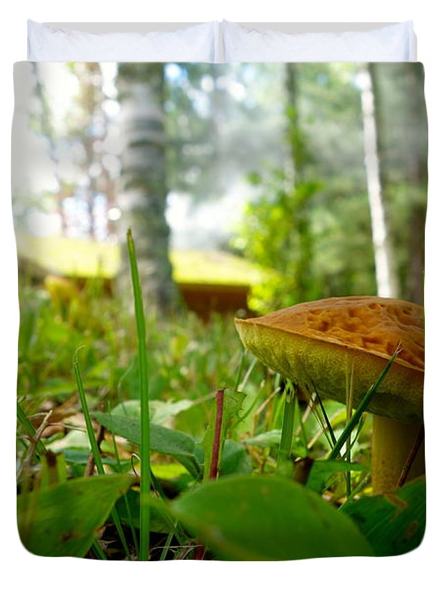 Fungi Duvet Cover featuring the photograph Fairy Home by Jacqueline Athmann