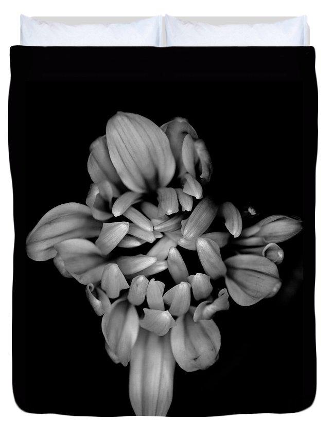Chrysanthemum Duvet Cover featuring the photograph Faith Love Hope by Kim Holder