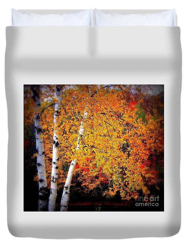 Trees Duvet Cover featuring the photograph Dazzling Birch by Jaunine Roberts
