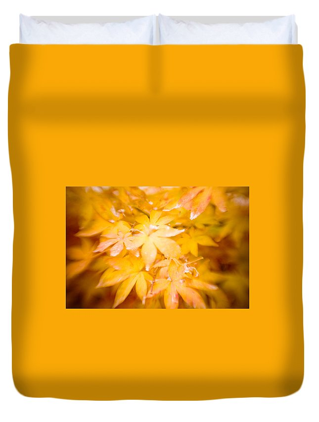 Color Duvet Cover featuring the photograph Fall Colors 6664 by Timothy Bischoff