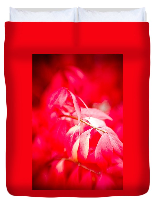 Color Duvet Cover featuring the photograph Fall Colors 6669 by Timothy Bischoff