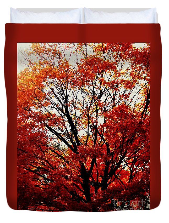 Fall Duvet Cover featuring the photograph Fall Colors Cape May Nj by Eric Schiabor