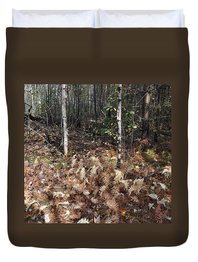 Fern Duvet Cover featuring the photograph Fall Ferns by Valerie Kirkwood