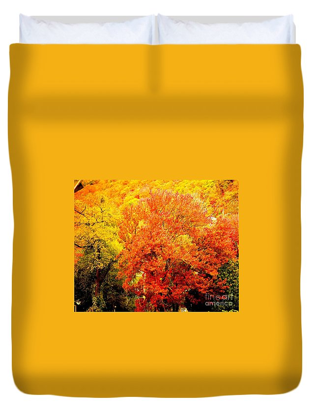 Fine Art Photography Duvet Cover featuring the photograph Fall In Full Bloom by Nicholas Costanzo
