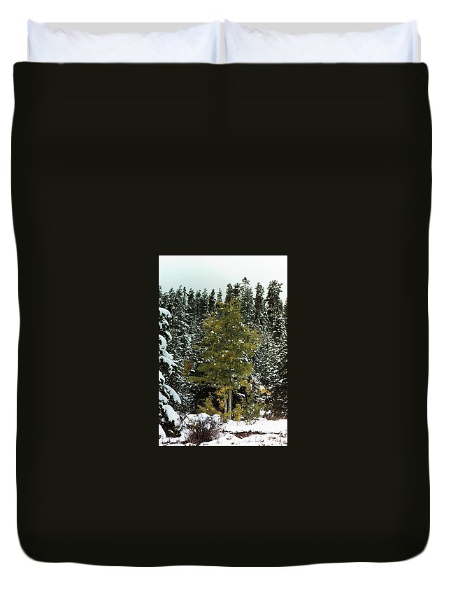 Fall Duvet Cover featuring the photograph Fall Into Winter by Brandi Maher