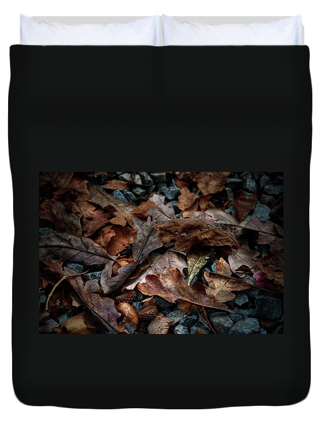 Oak Leaves Duvet Cover featuring the photograph Fall Leaves And Acorns by Sharon Meyer