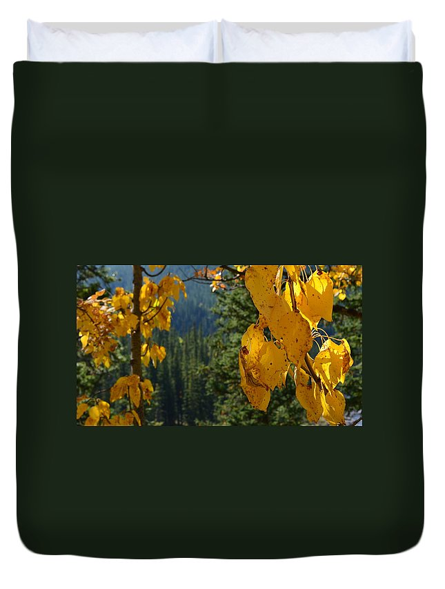 Canvas Prints Duvet Cover featuring the photograph Fall Leaves by Cheryl Miller