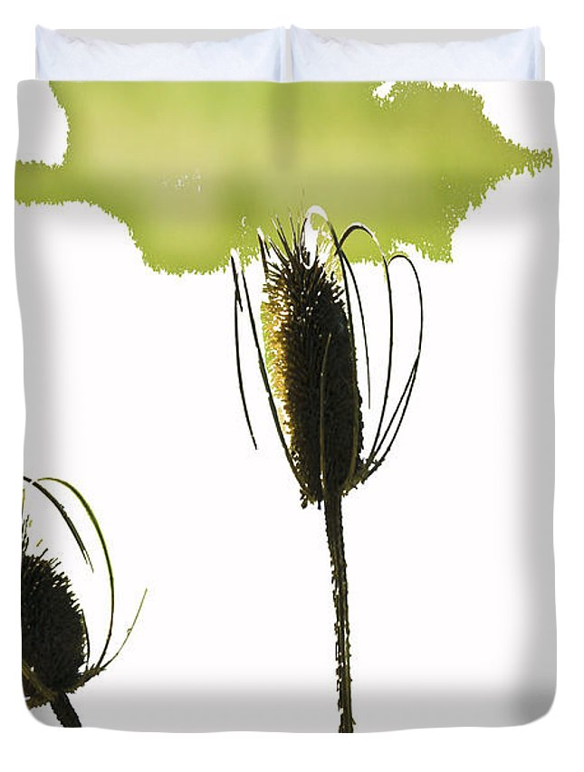 Botanical Duvet Cover featuring the photograph Fall On White by Rich Collins