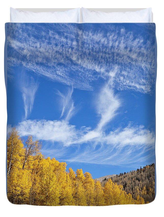00559145 Duvet Cover featuring the photograph Quaking Aspens In Fall by Yva Momatiuk John Eastcott
