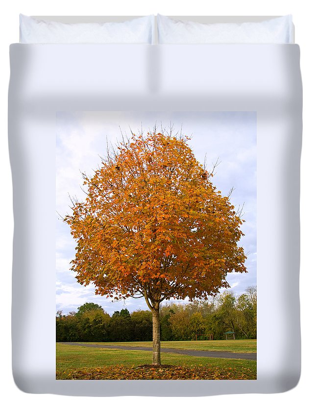 Maple Tree Duvet Cover featuring the photograph Fall Sugar Maple by Melinda Fawver