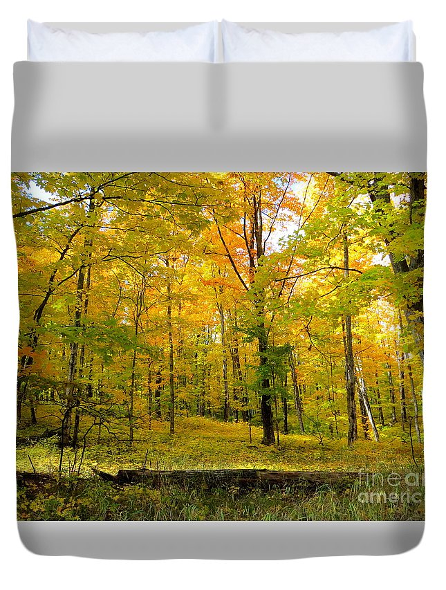 Fall Duvet Cover featuring the photograph Color My World by Jaunine Roberts