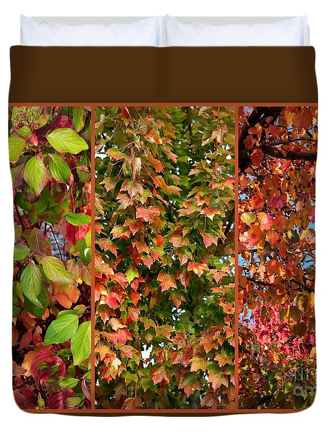 Fall Colors Duvet Cover featuring the photograph Fall Trio Collage by Carol Groenen