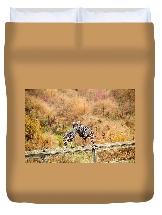 Fall Duvet Cover featuring the photograph Fall Turkeys by Brian Williamson