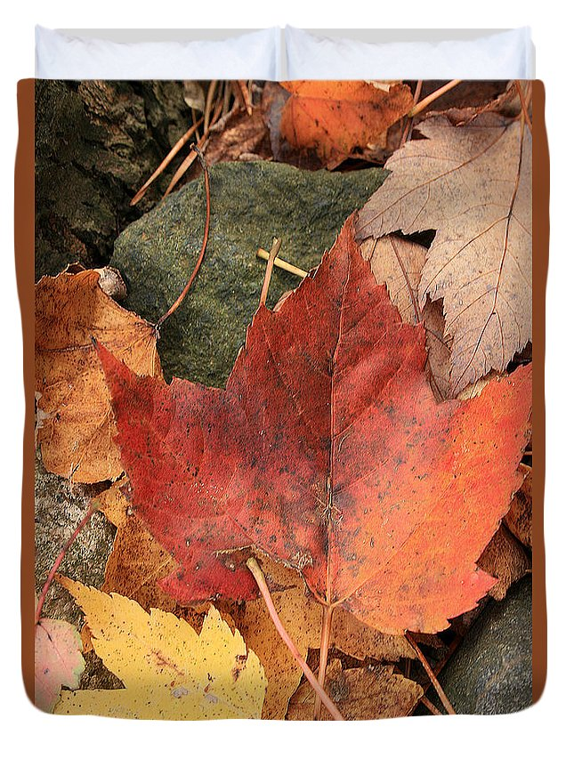 Fall Duvet Cover featuring the photograph Fallen Leaves by Kathy DesJardins