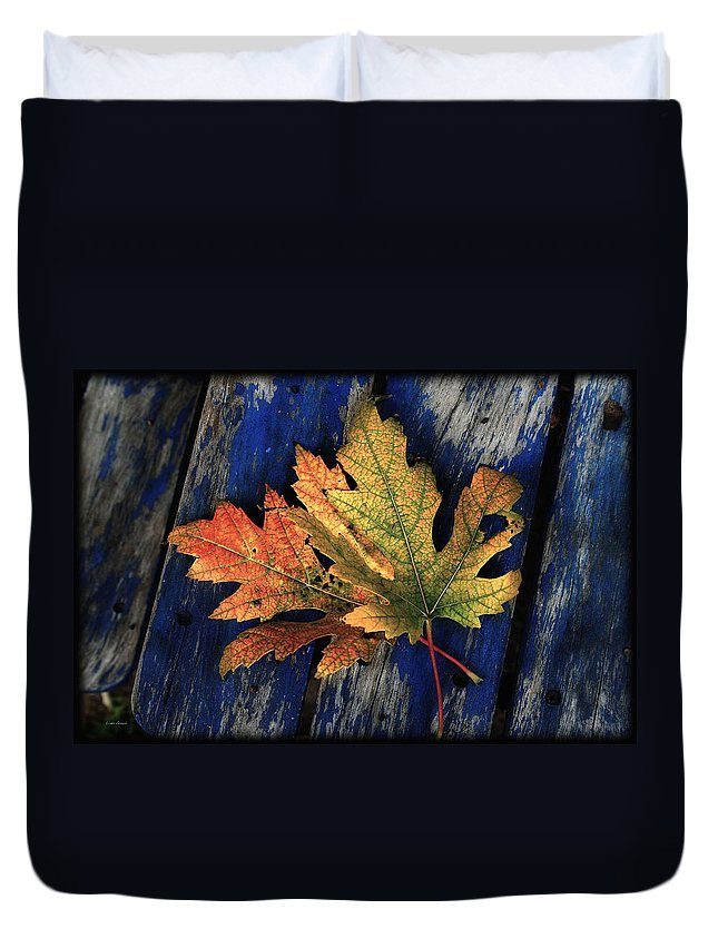 Nature Duvet Cover featuring the photograph Falling For Colour by Linda Sannuti