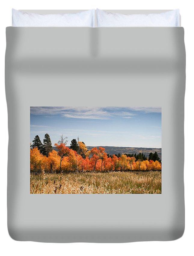 Horizontal Duvet Cover featuring the photograph Fall's Splendor - Casper Mountain - Casper Wyoming by Diane Mintle