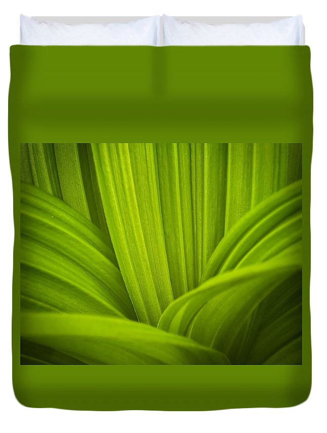 Veratrum Viride Duvet Cover featuring the photograph False Hellebore Abstract by John Vose
