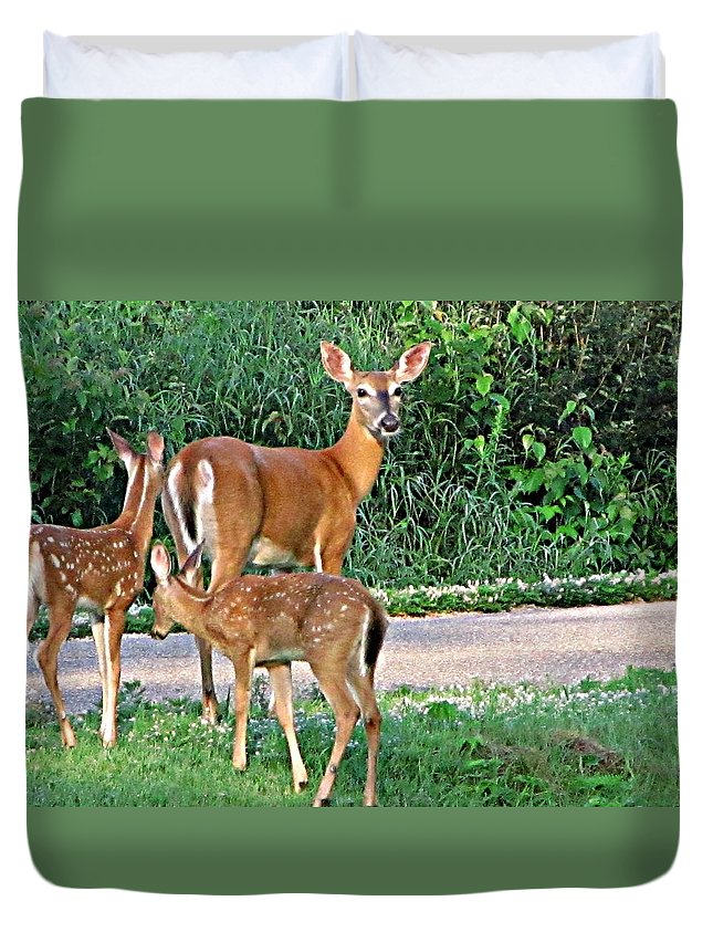 Deer Duvet Cover featuring the painting Family Love by Robert Nacke