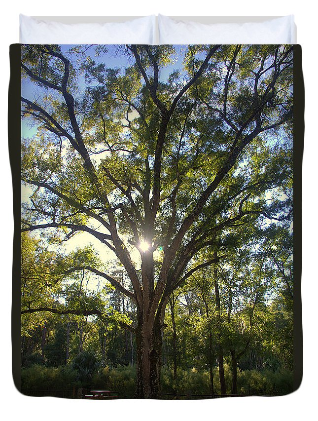 Hhsp Duvet Cover featuring the photograph Family Tree by Jen T