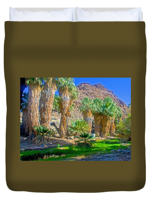 Fan Palms By The Creek In Lower Palm Canyon In Indian Canyons Near Palm Springs Duvet Cover featuring the photograph Fan Palms By The Creek In Lower Palm Canyon In Indian Canyons Near Palm Springs-california by Ruth Hager