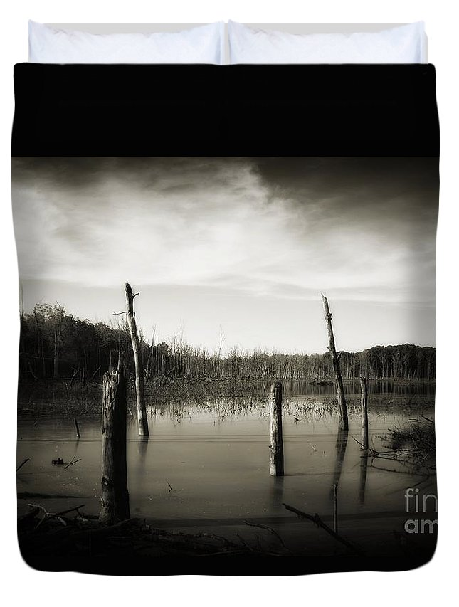 Duvet Cover featuring the photograph Fancher Davidge 2 by Chet B Simpson