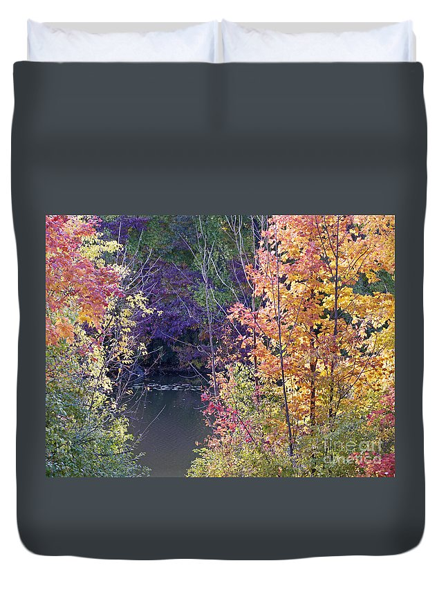 Fall Duvet Cover featuring the photograph Fanciful Forest by Ann Horn