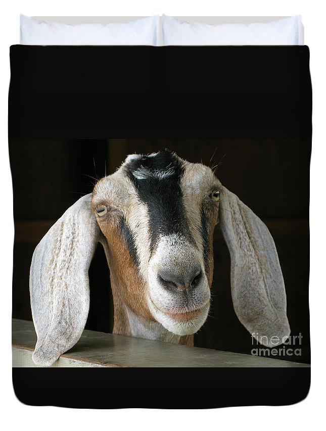 Goat Duvet Cover featuring the photograph Farm Favorite by Ann Horn